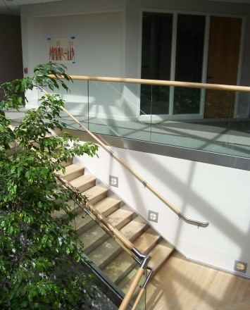 Overlooking view in skylit Office, PA, Optik Shoe with wood cap rail